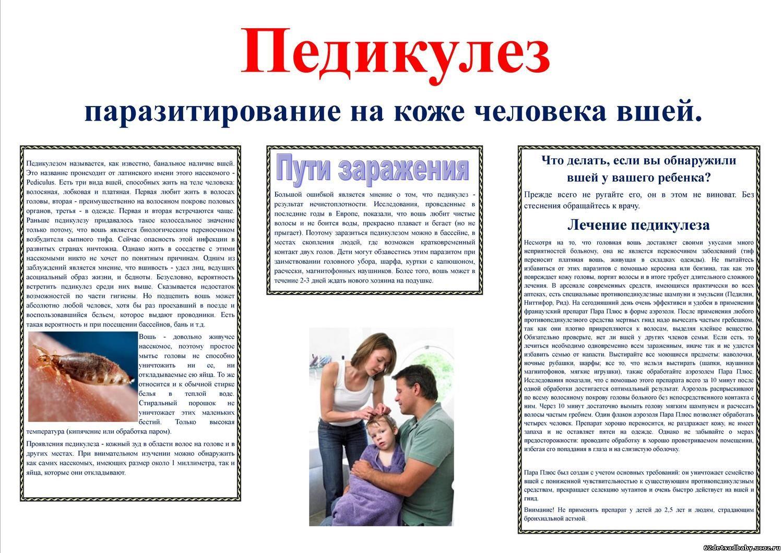 Требования к медицинской сестре по профилактике сыпного тифа и педикулёза